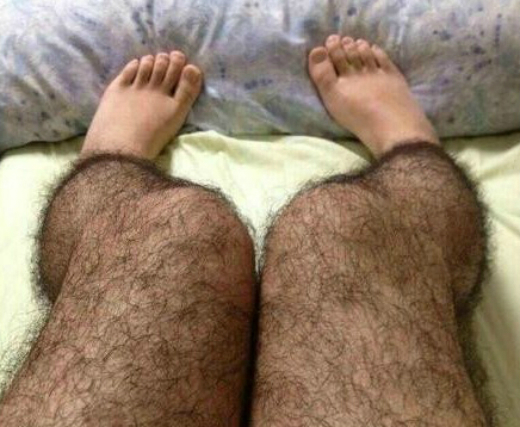 Hairy-leggings-main